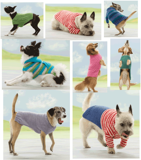 Seamless Knits for Posh Pups outtakes